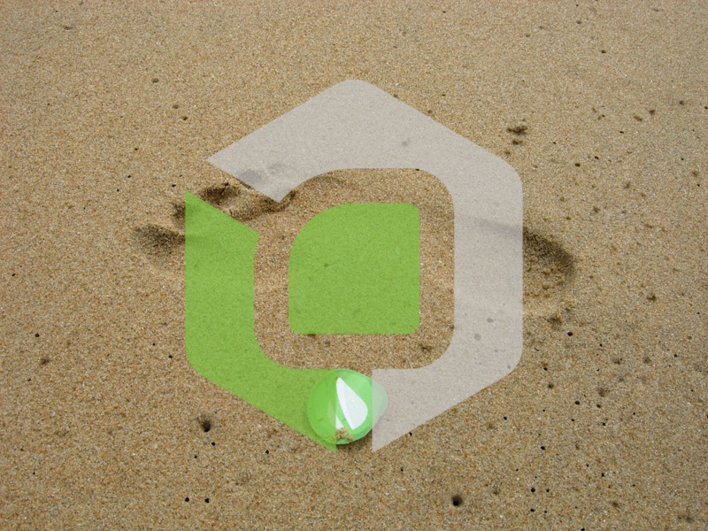 Envato on the Beach